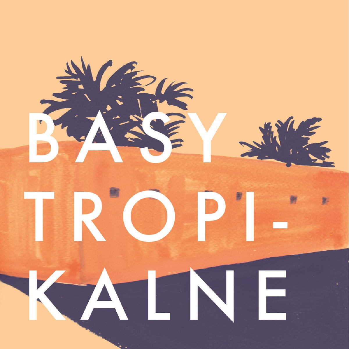 New compilation to celebrate 50 editions of Poland's Basy Tropikalne radioshow dedicated to Latin America.