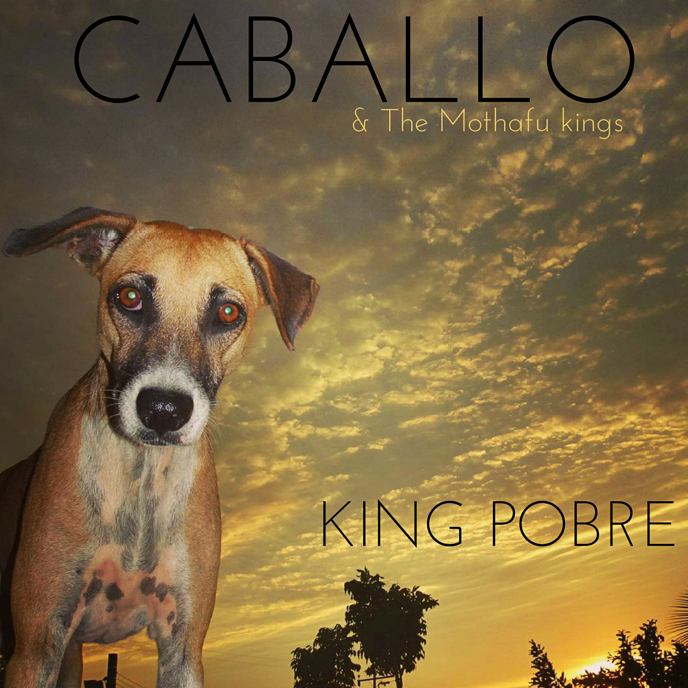 Caballo is back to the global scene with a new Ep called King Pobre. Check the video feat Major Lazer and grab it for FREE