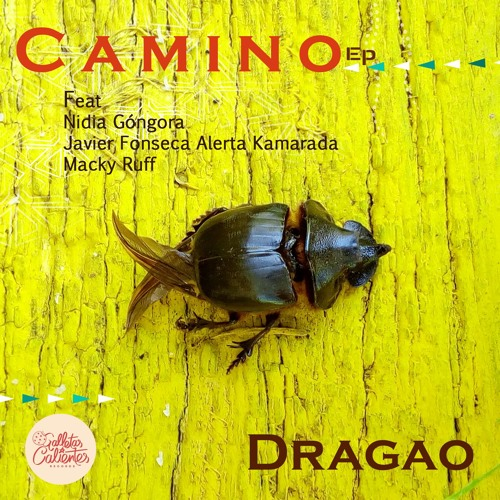 Videotime - Dragao ft. Nidia Gongora - Cumbia Lobina